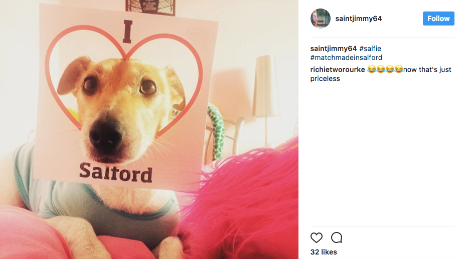 Dog poses for a #Salfie for University of Salford on Instagram